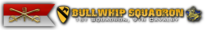 Bullwhip Squadron Association
